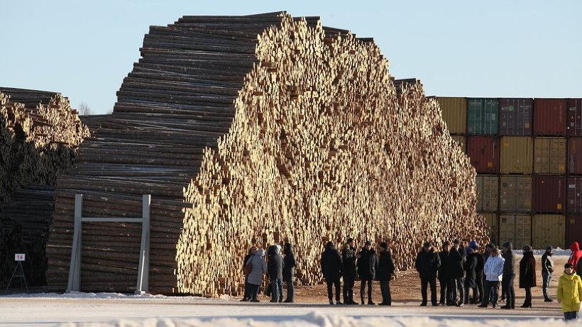 Озвучены планы построительству вАрхангельске крупного лесного производства