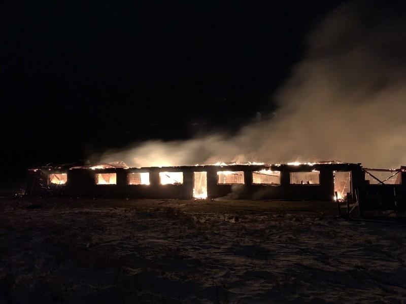 В результате пожара на частной ферме в Вельском районе погибли животные
